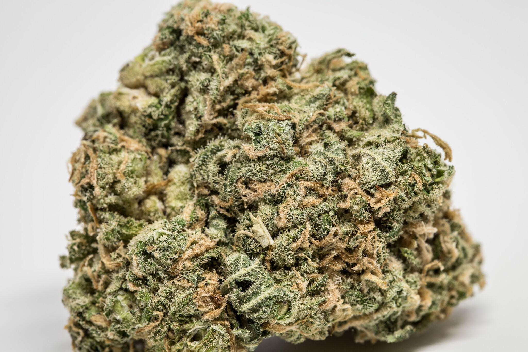 Afghan Skunk Weed; Afghan Skunk Cannabis Strain, Afghan Skunk Indica Marijuana Strain