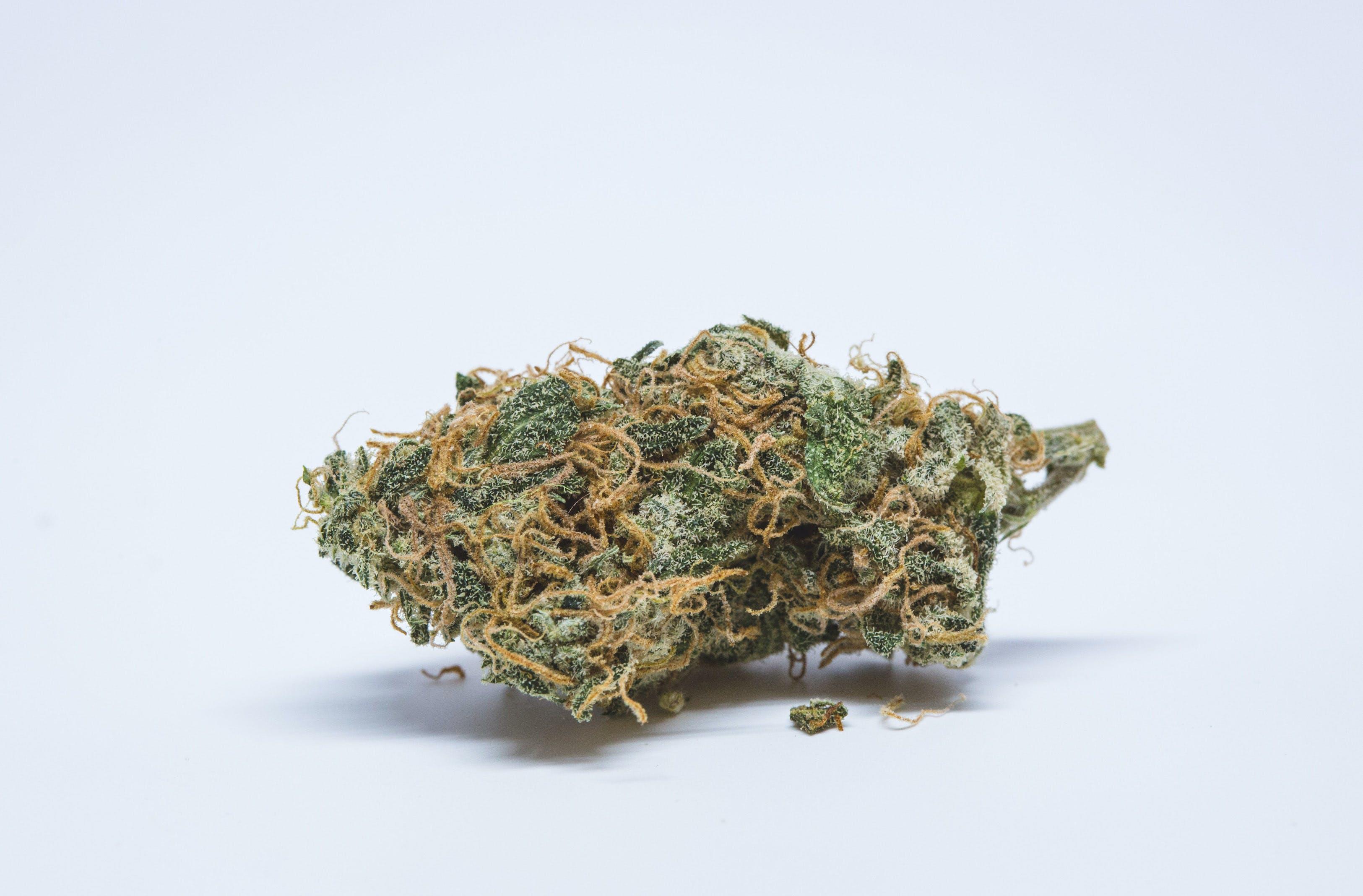 Lemon Pie Weed; Lemon Pie Cannabis Strain; Lemon Pie Sativa Marijuana Strain