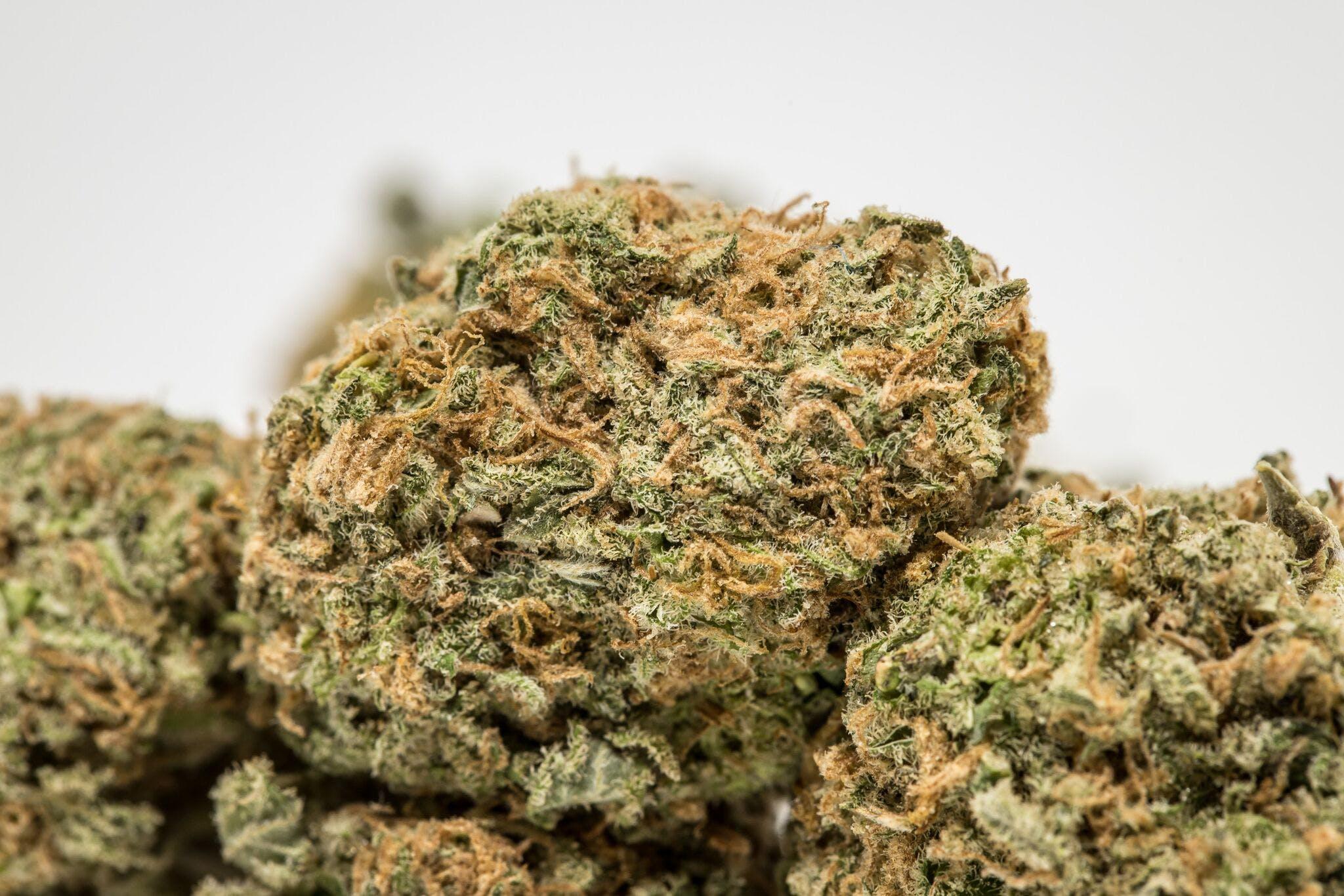 Cookies Kush Weed; Cookies Kush Cannabis Strain; Cookies Kush Indica Marijuana Strain