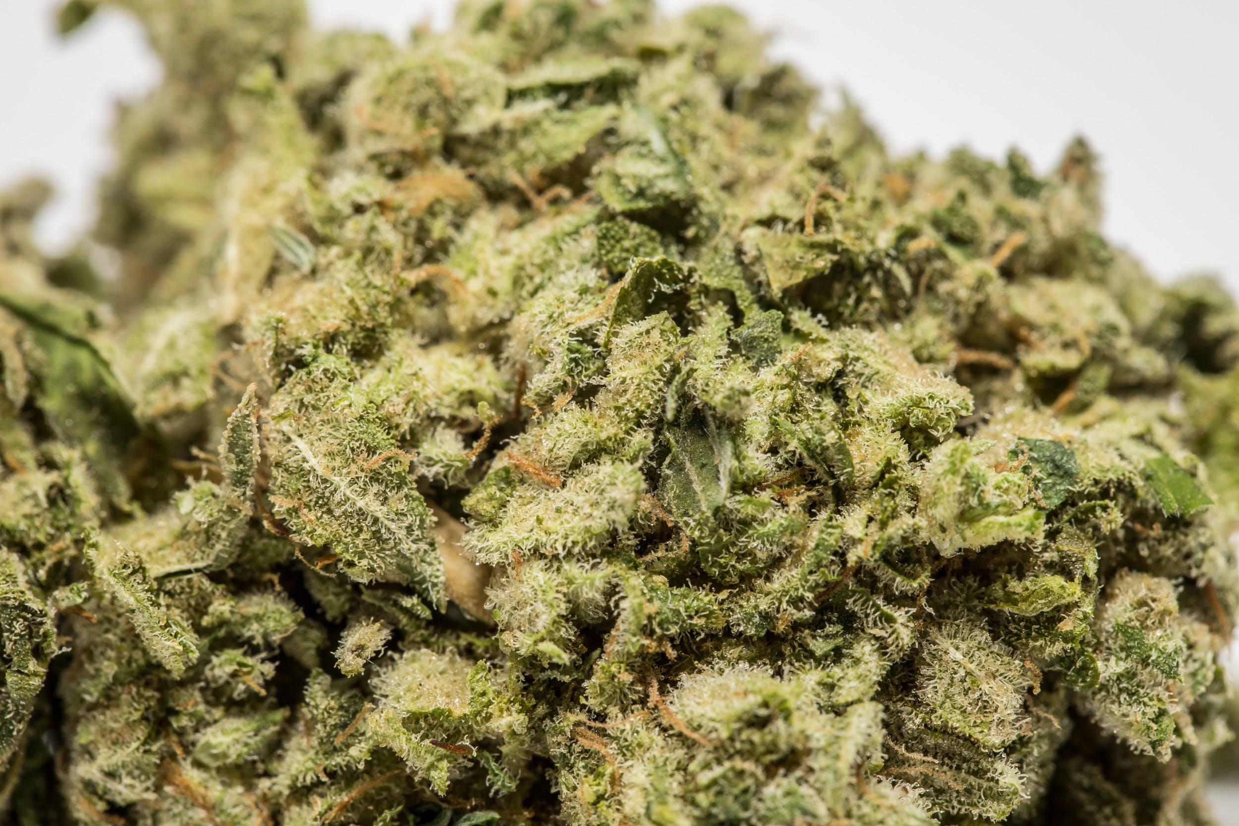 GG1 Weed; GG1 Cannabis Strain; GG1 Hybrid Marijuana Strain