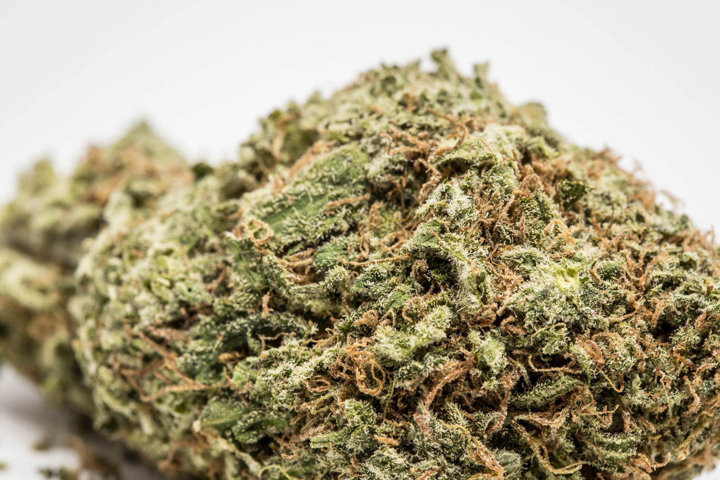 Ice Cream Weed; Ice Cream Cannabis Strain; Ice Cream Hybrid Marijuana Strain