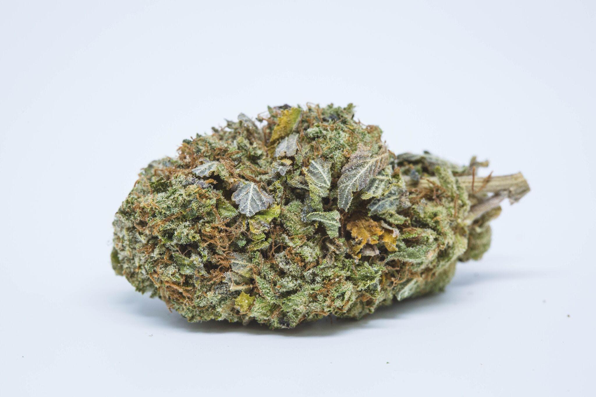 Master Bubba Weed; Master Bubba Cannabis Strain; Master Bubba Indica Marijuana Strain