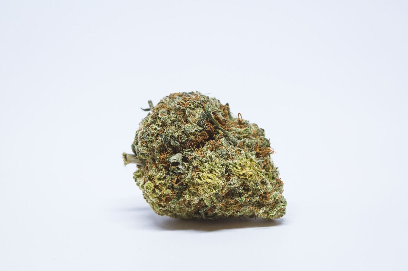 A-Train Weed; A-Train Cannabis Strain; A-Train Hybrid Marijuana Strain