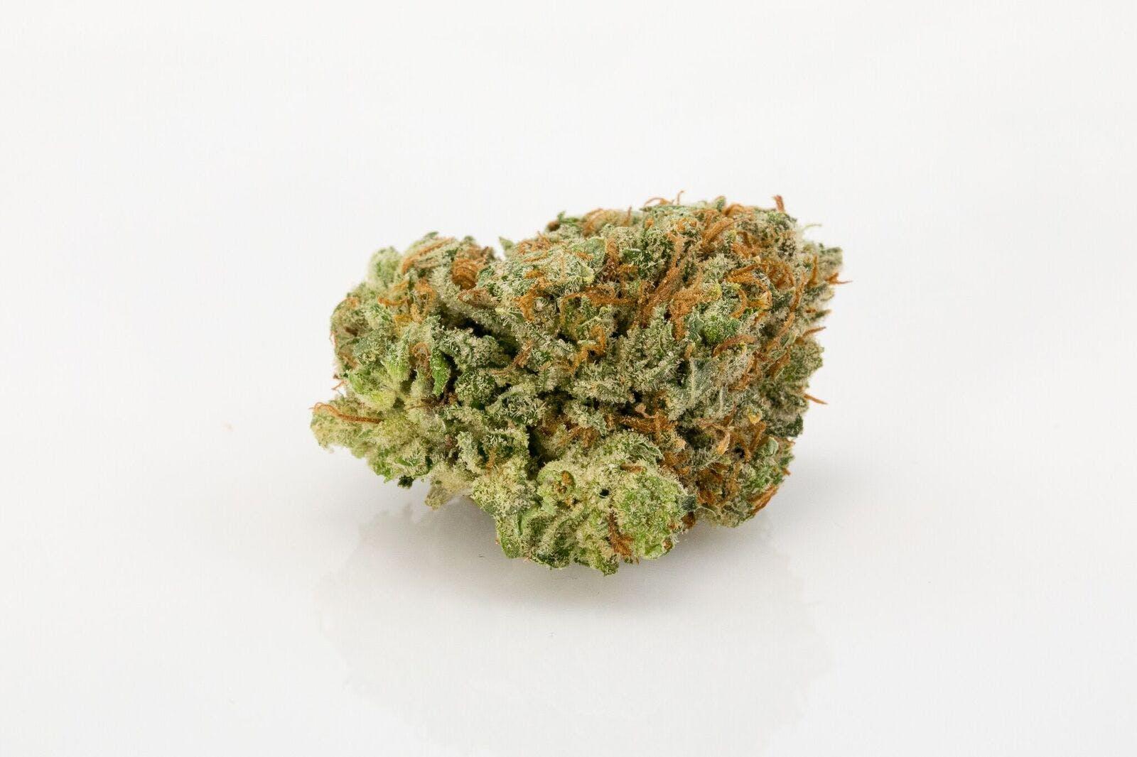 Ambrosia Weed; Ambrosia Cannabis Strain; Ambrosia Hybrid Marijuana Strain
