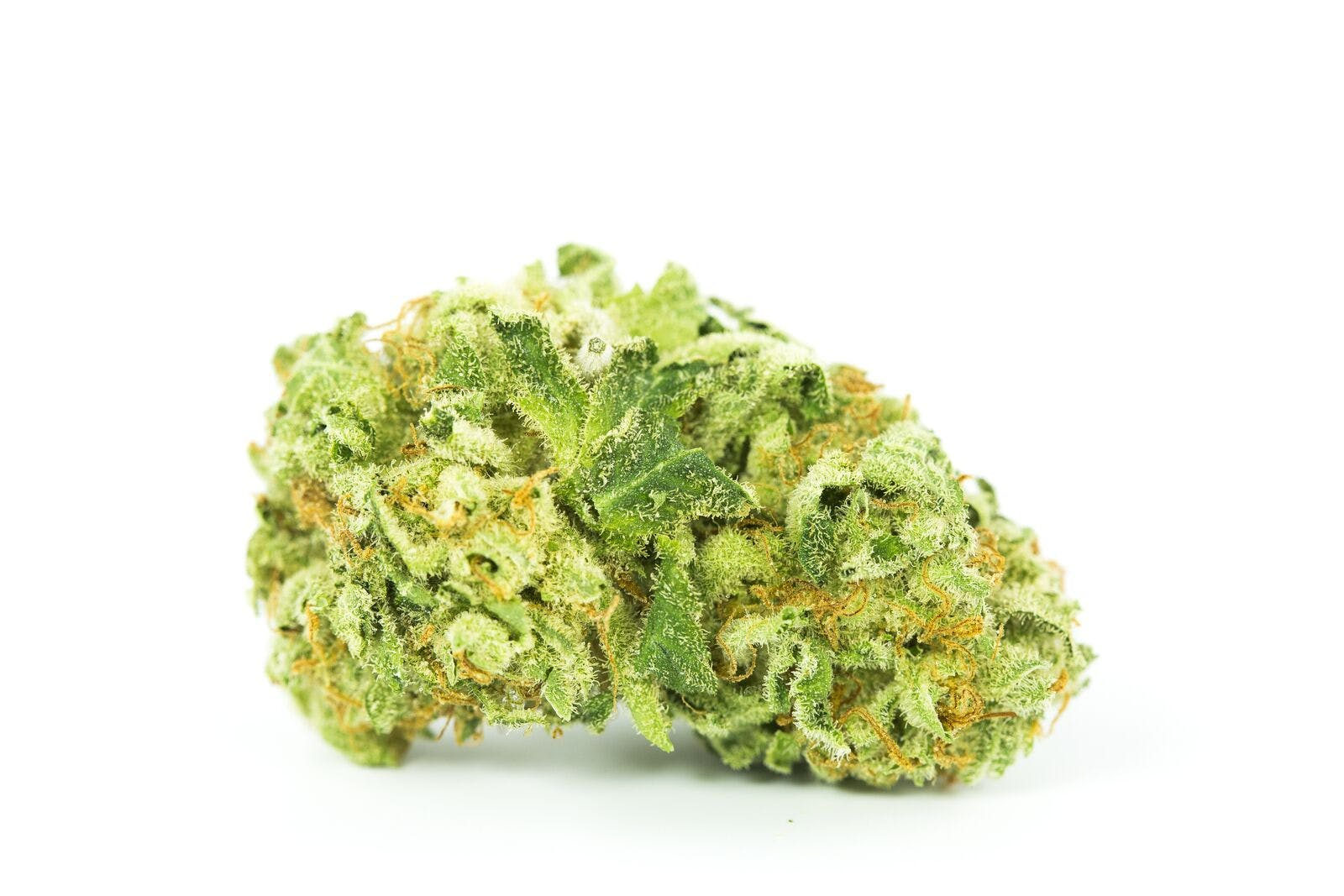 Amnesia Lemon Weed; Amnesia Lemon Cannabis Strain; Amnesia Lemon Sativa Marijuana Strain