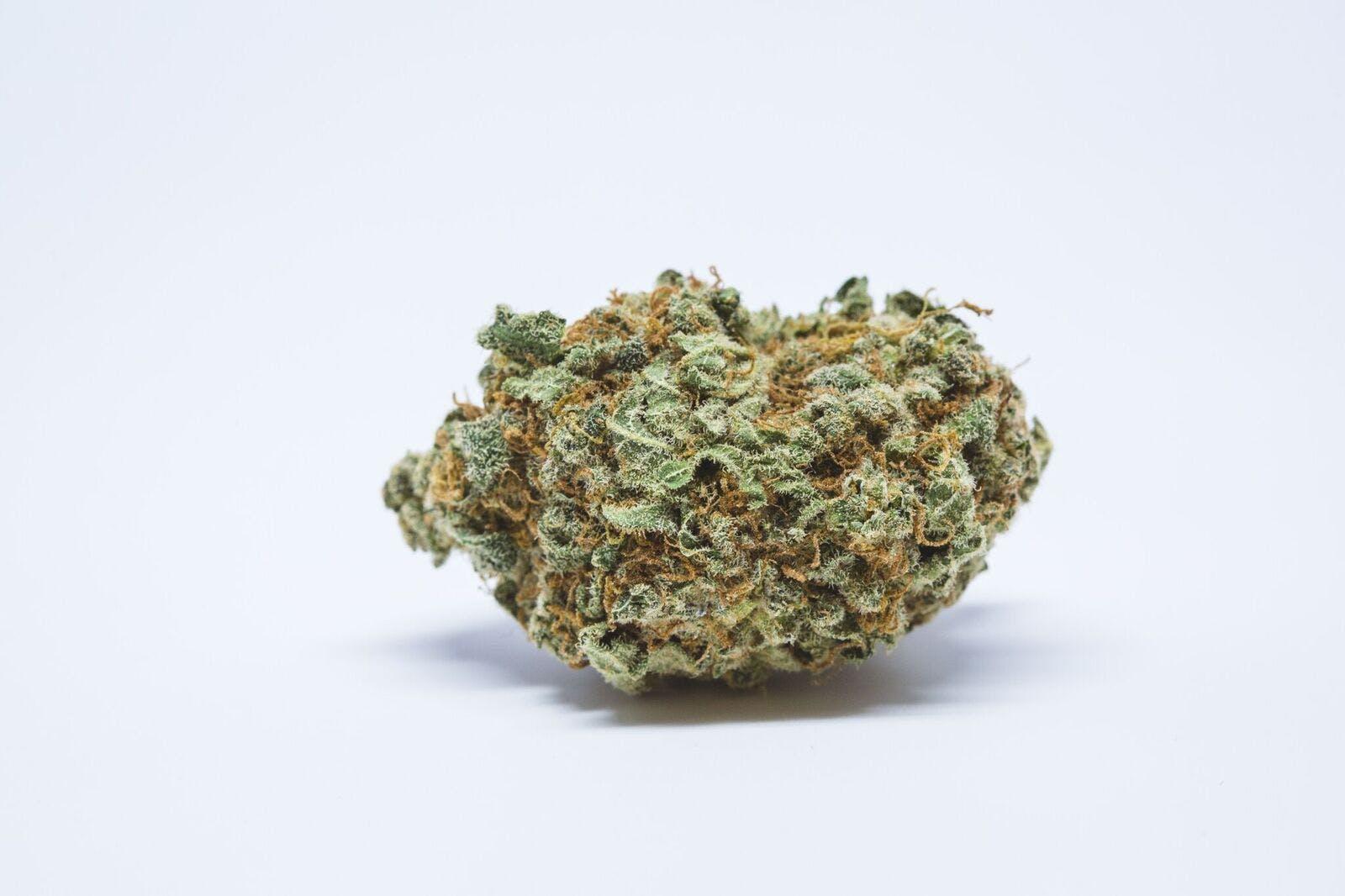 Citrus Kush Weed; Citrus Kush Cannabis Strain; Citrus Kush Hybrid Marijuana Strain