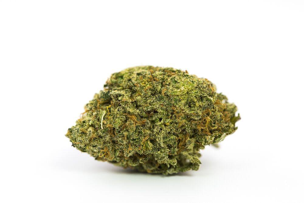 Dutch Dragon Weed; Dutch Dragon Cannabis Strain; Dutch Dragon Sativa Marijuana Strain