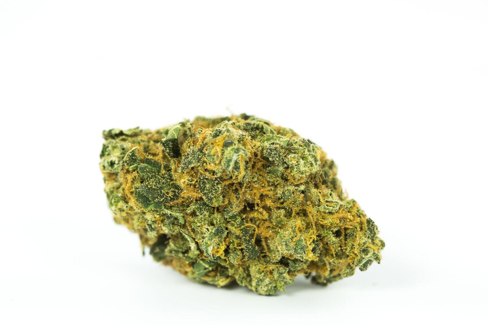 Fruit Loops Weed; Fruit Loops Cannabis Strain; Fruit Loops Hybrid Marijuana Strain