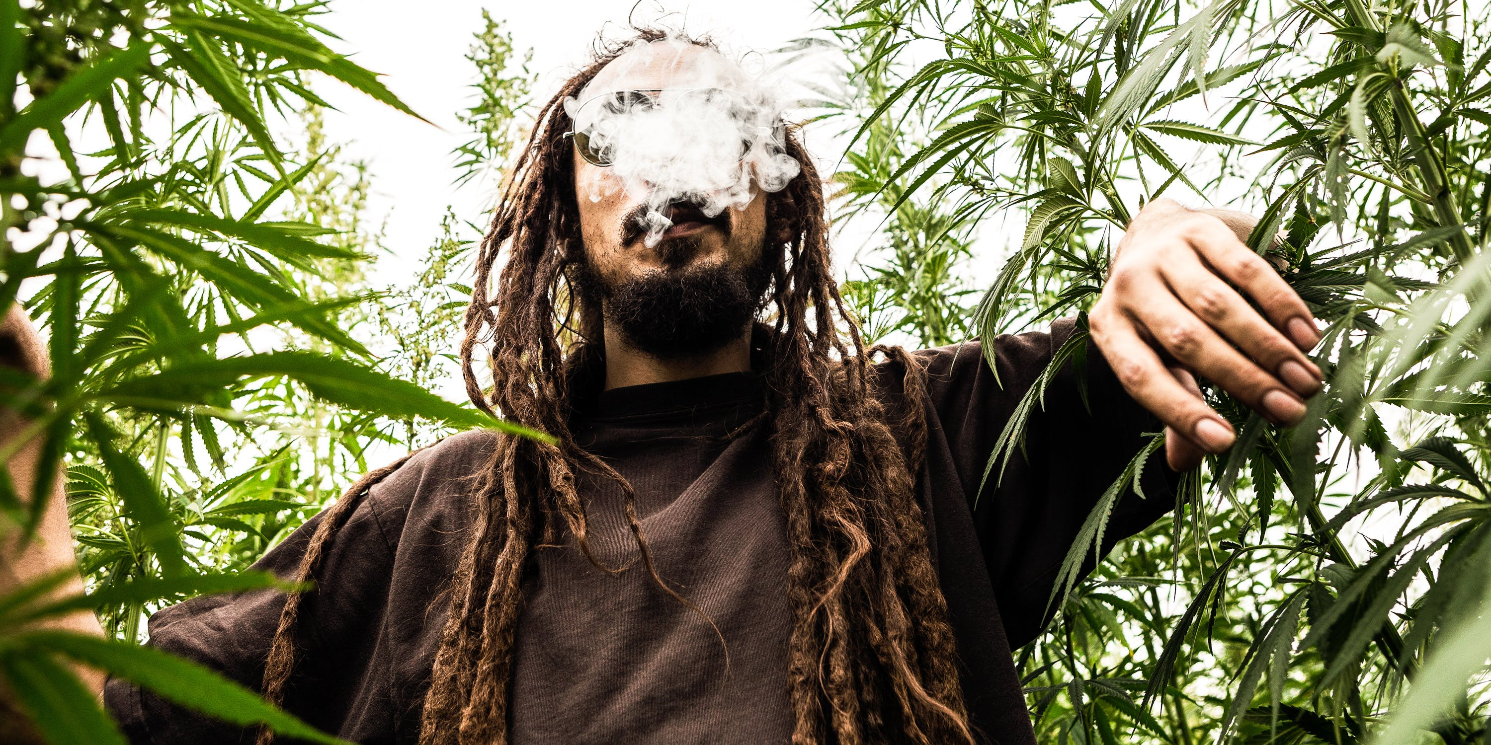 The 5 Best Products For Successfully Smoking Weed Outside