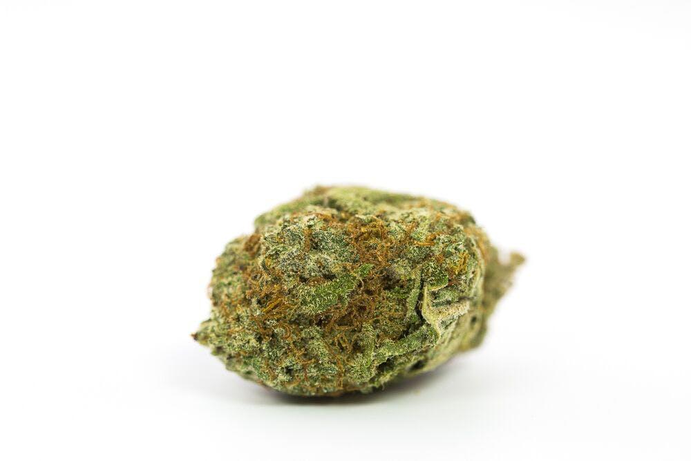 Green Lantern Weed; Green Lantern Cannabis Strain; Green Lantern Sativa Marijuana Strain