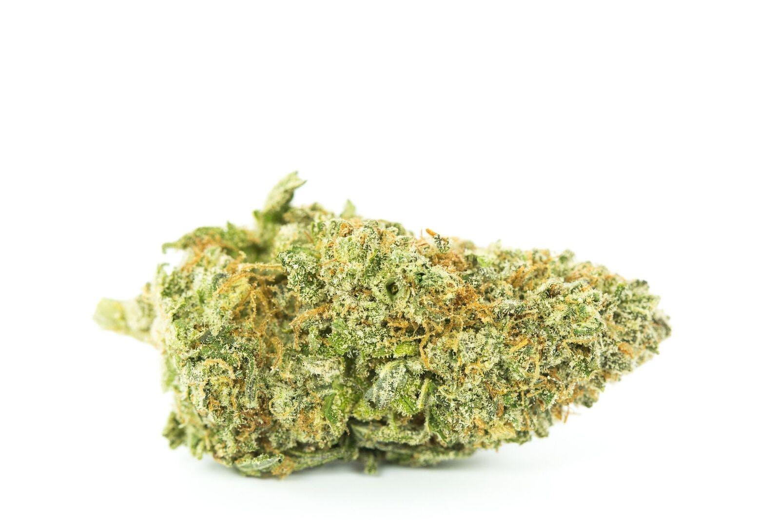 Huckleberry Weed; Huckleberry Cannabis Strain; Huckleberry Hybrid Marijuana Strain