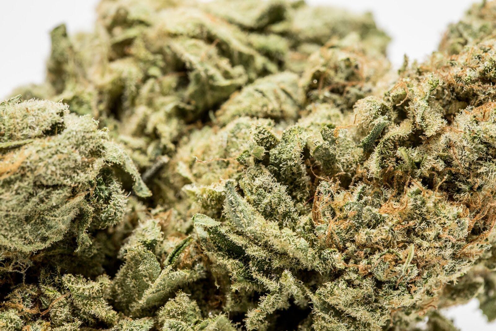 Ice Weed; Ice Cannabis Strain; Ice Hybrid Marijuana Strain