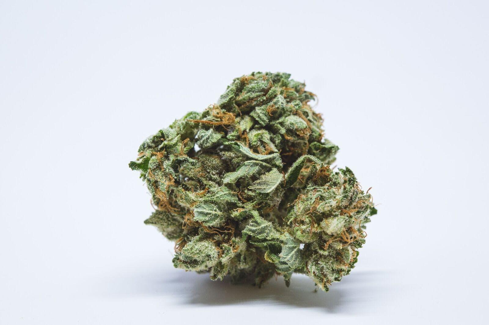 Jah Kush Weed; Jah Kush Cannabis Strain; Jah Kush Hybrid Marijuana Strain