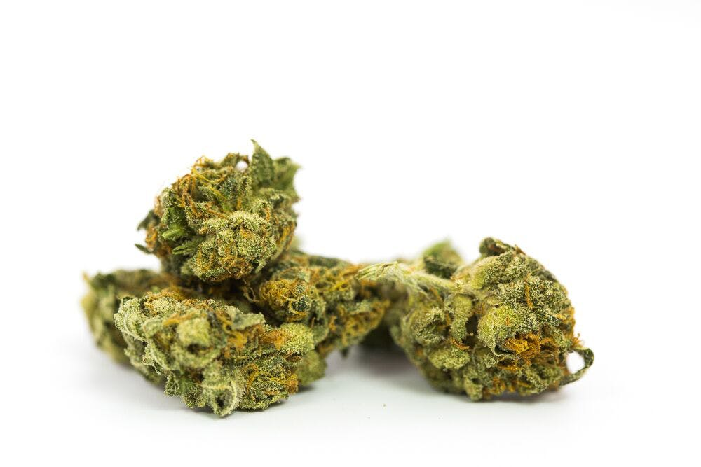 Jamaican Weed; Jamaican Cannabis Strain; Jamaican Sativa Marijuana Strain
