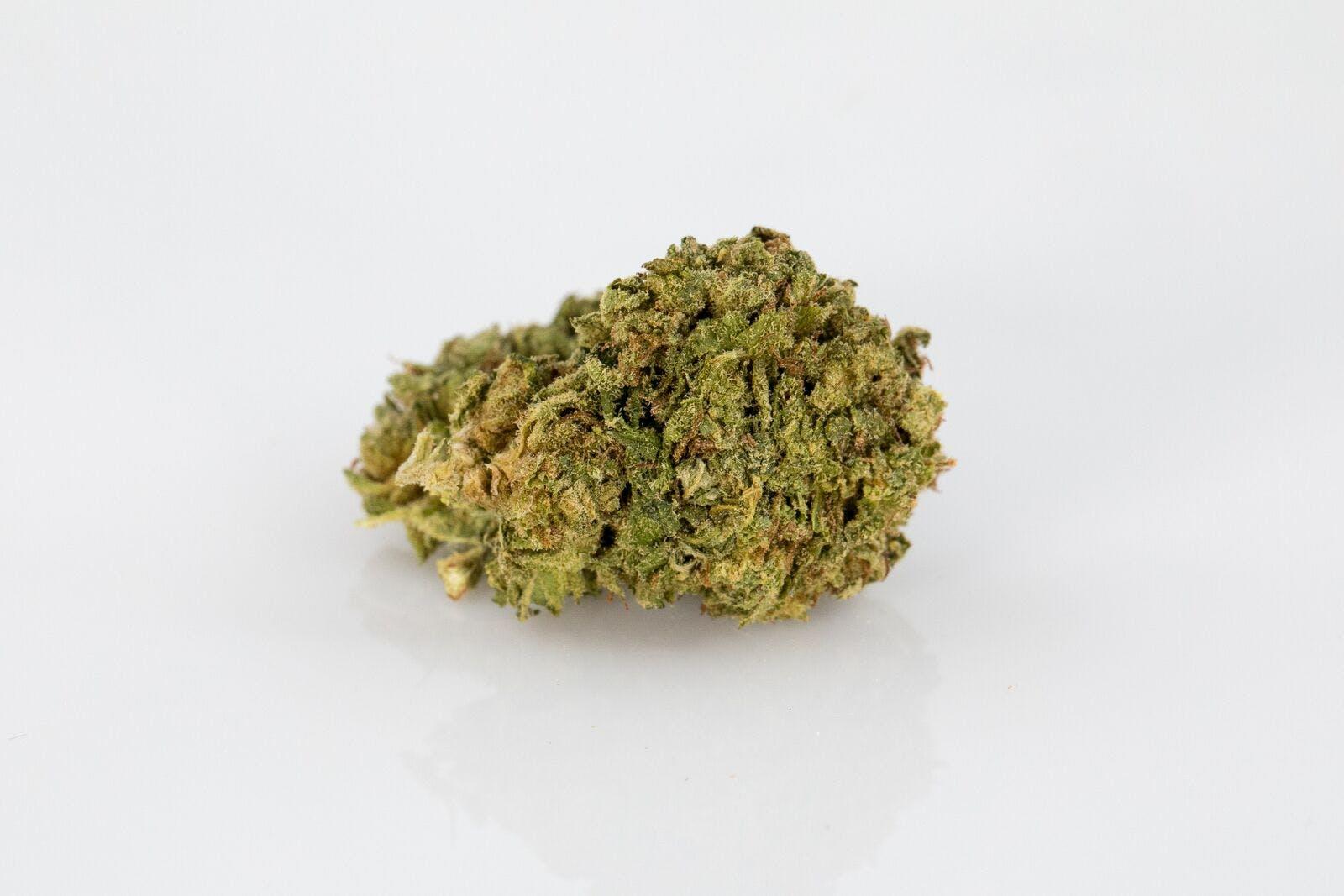 Junior Weed; Junior Cannabis Strain; Junior Indica Marijuana Strain