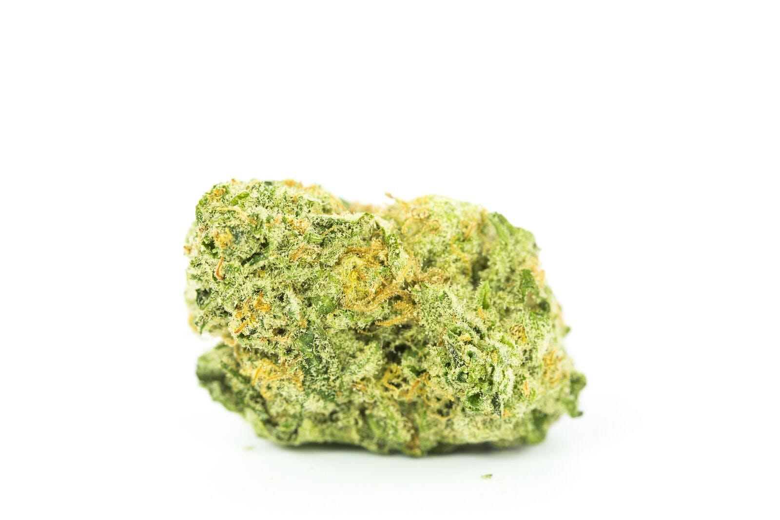 King Kong Weed; King Kong Cannabis Strain; King Kong Hybrid Marijuana Strain