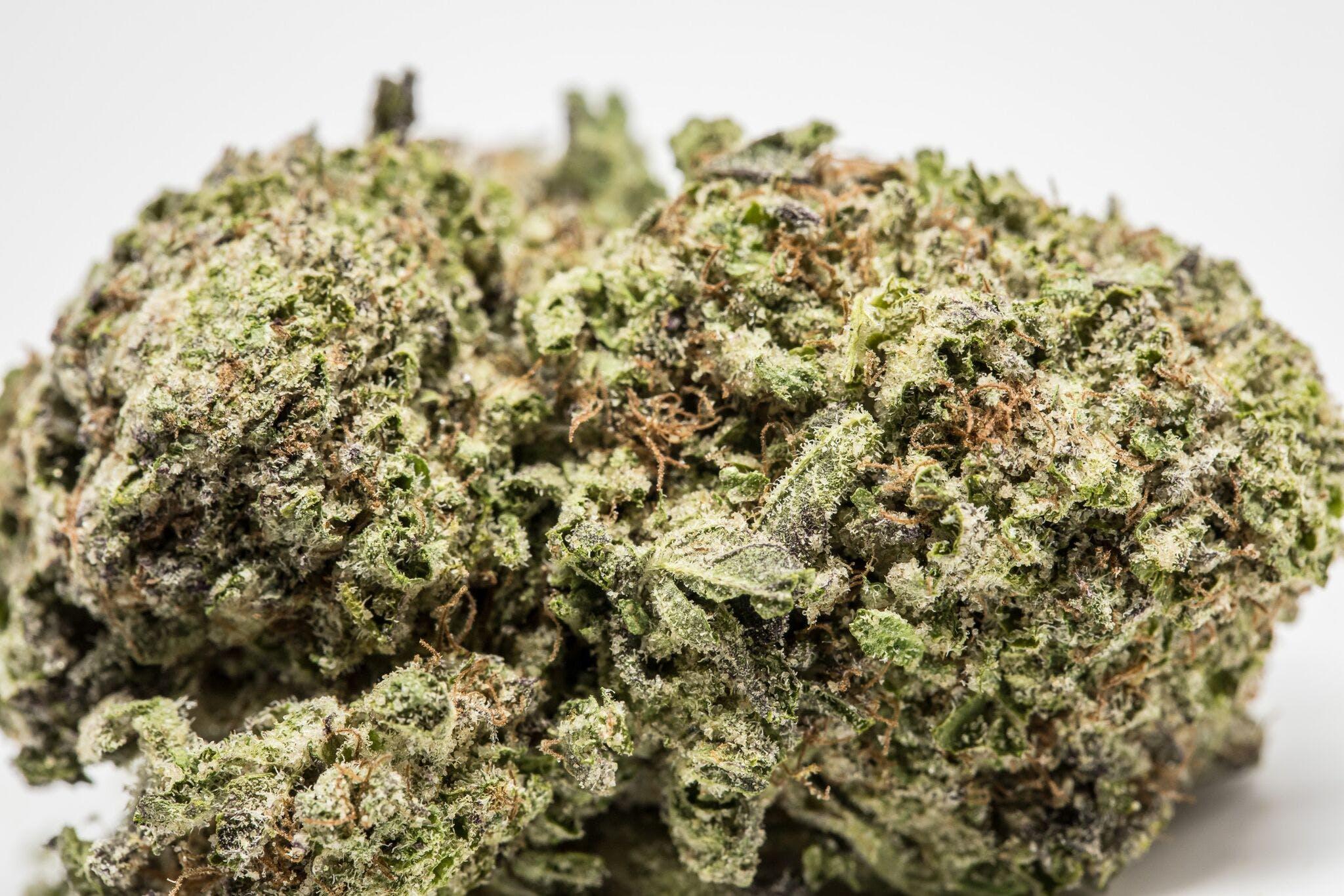 Lemon Cookies Weed; Lemon Cookies Cannabis Strain; Lemon Cookies Hybrid Marijuana Strain