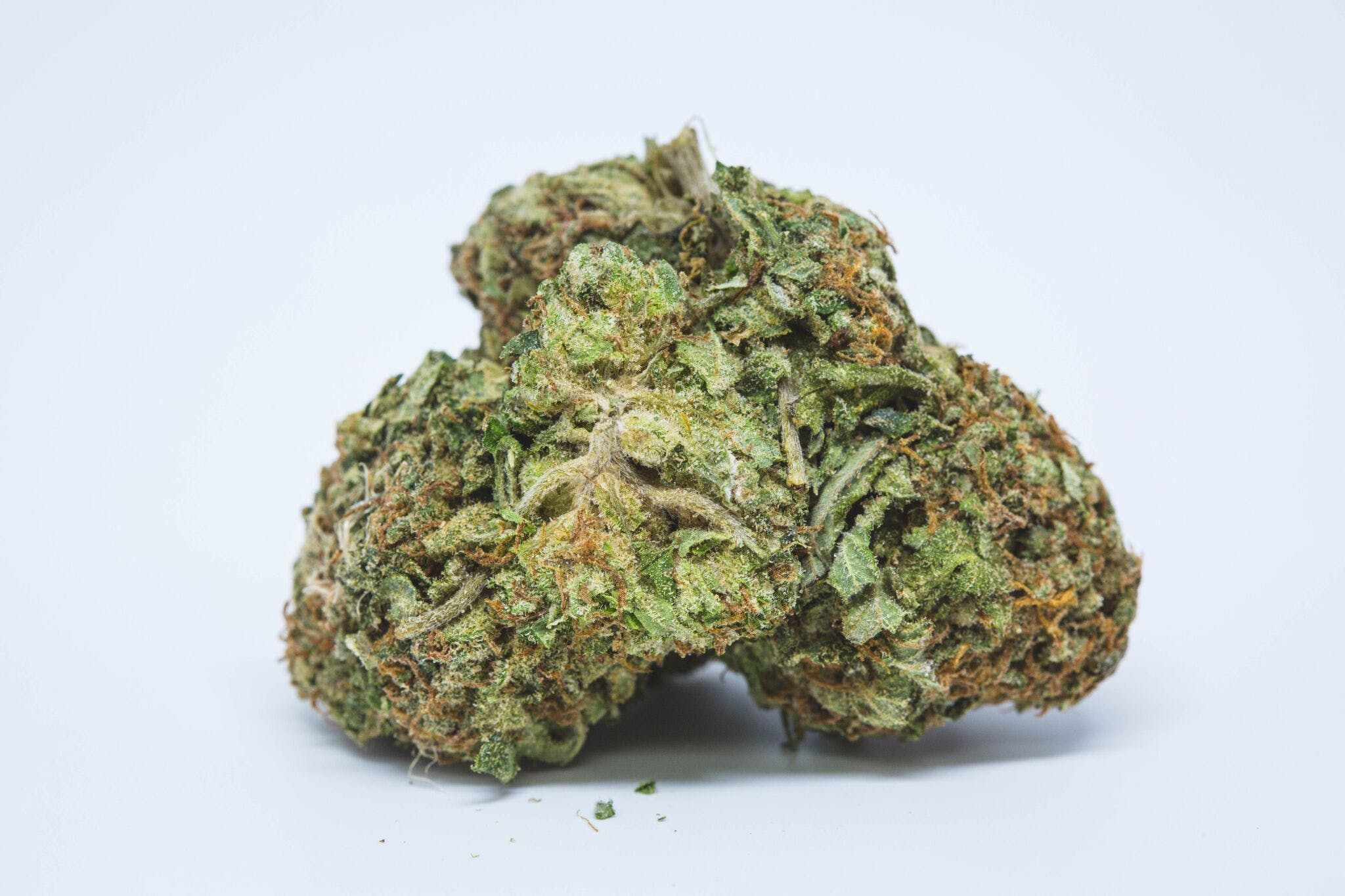 OG 18 Weed; OG 18 Cannabis Strain; OG 18 Hybrid Marijuana Strain