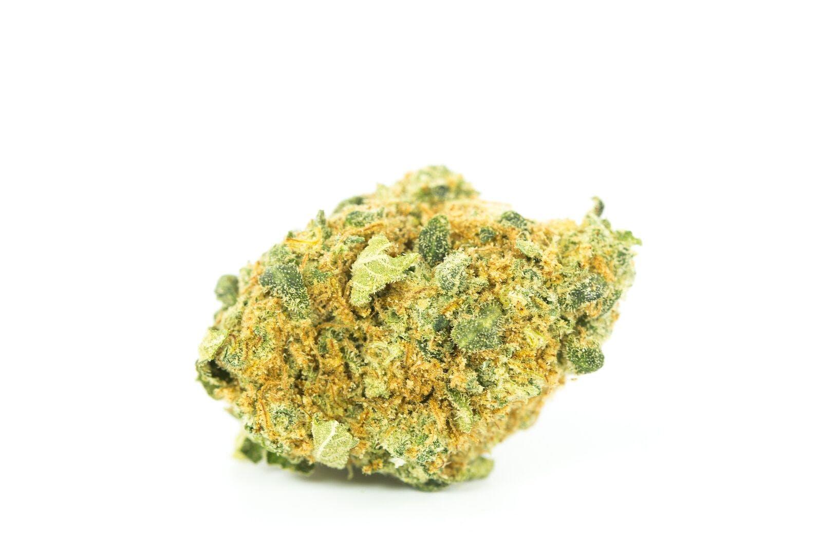 Orange Dream Weed; Orange Dream Cannabis Strain; Orange Dream Hybrid Marijuana Strain