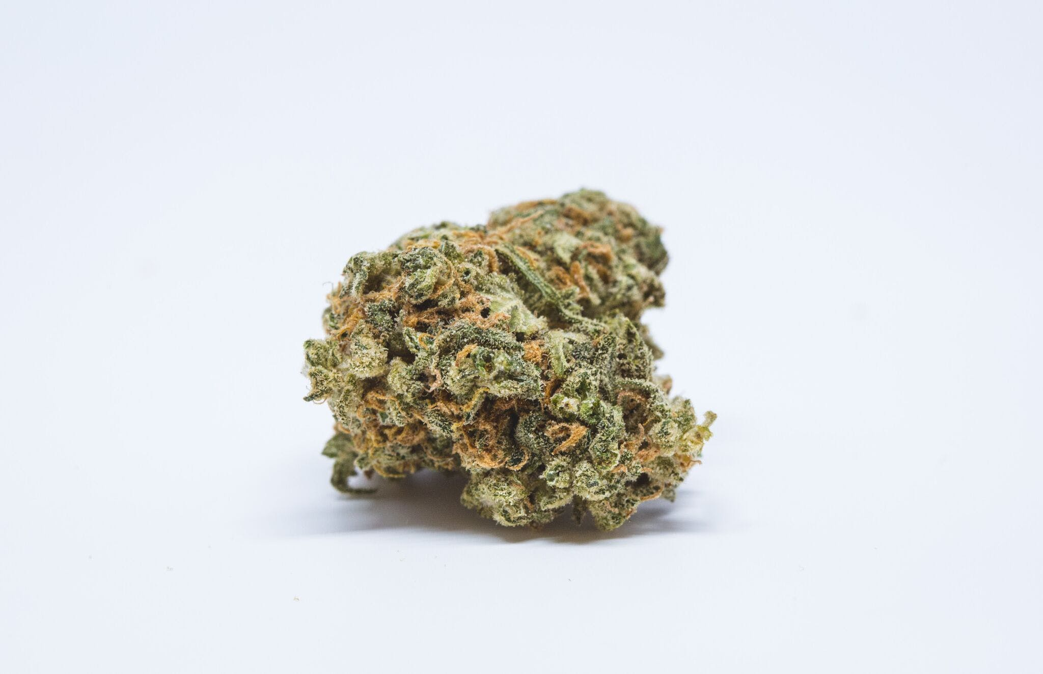 Orange Haze Weed; Orange Haze Cannabis Strain; Orange Haze Hybrid Marijuana Strain