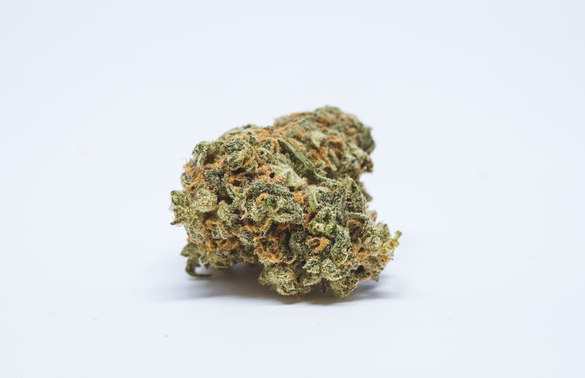 Orange Haze Strain of Marijuana   Weed   Cannabis   Herb   Herb