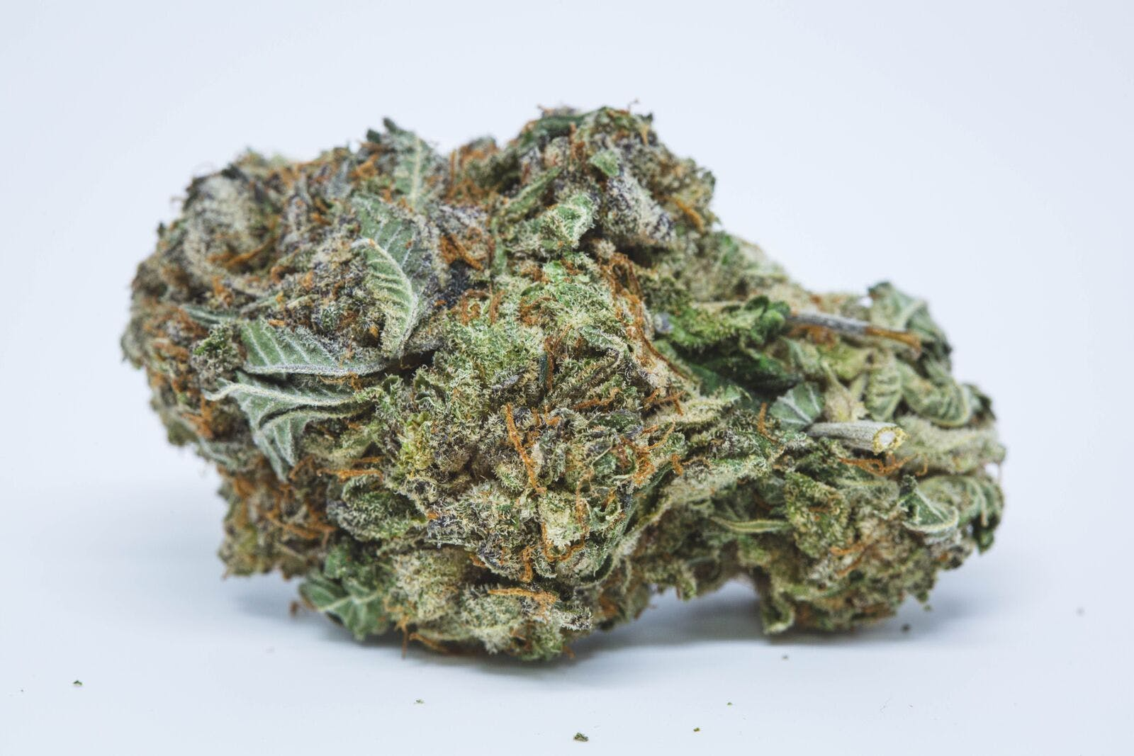Platinum Purple Kush Weed; Platinum Purple Kush Cannabis Strain; Platinum Purple Kush Indica Marijuana Strain
