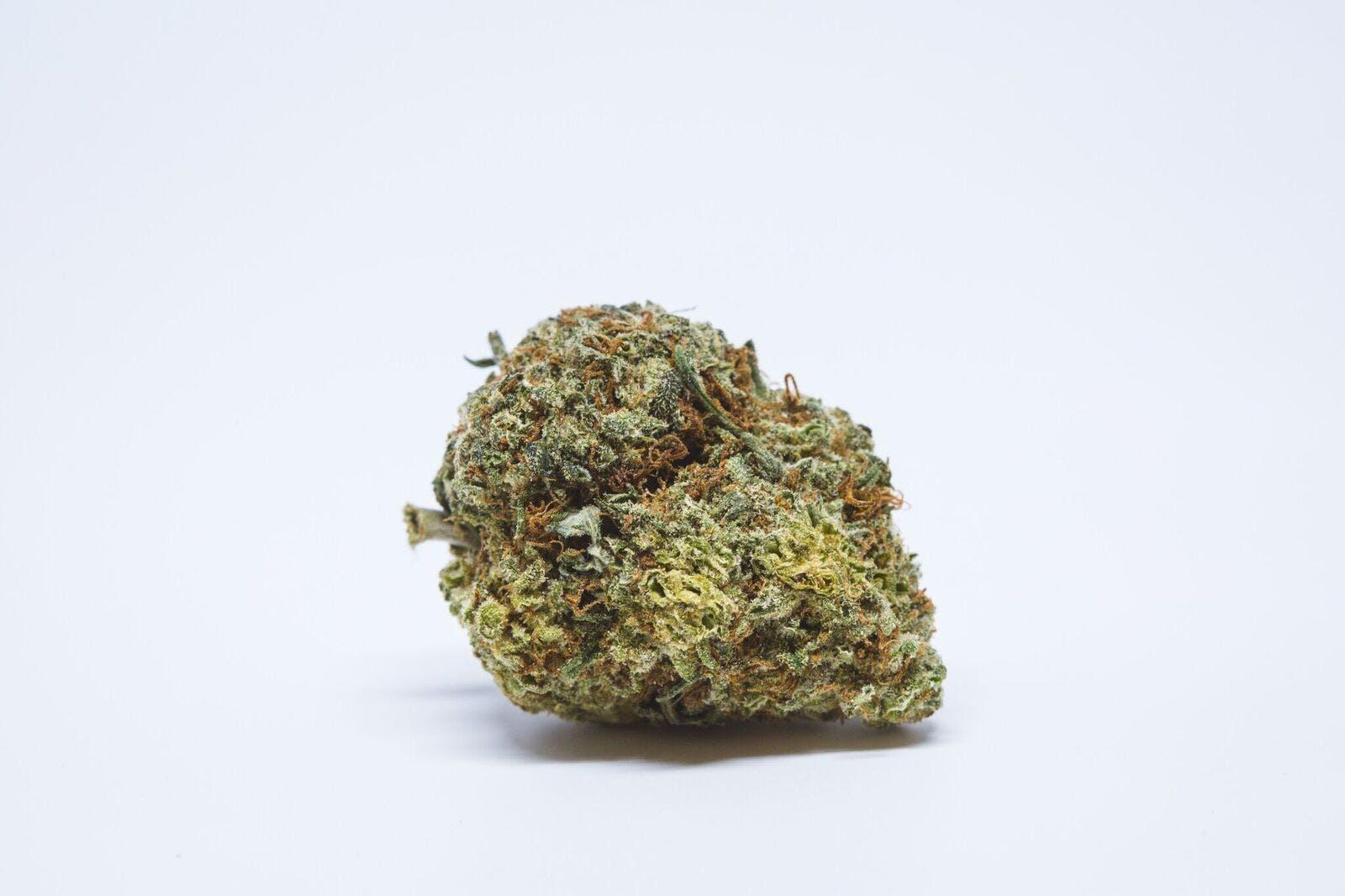 Quantum Kush Weed; Quantum Kush Cannabis Strain; Quantum Kush Sativa Marijuana Strain