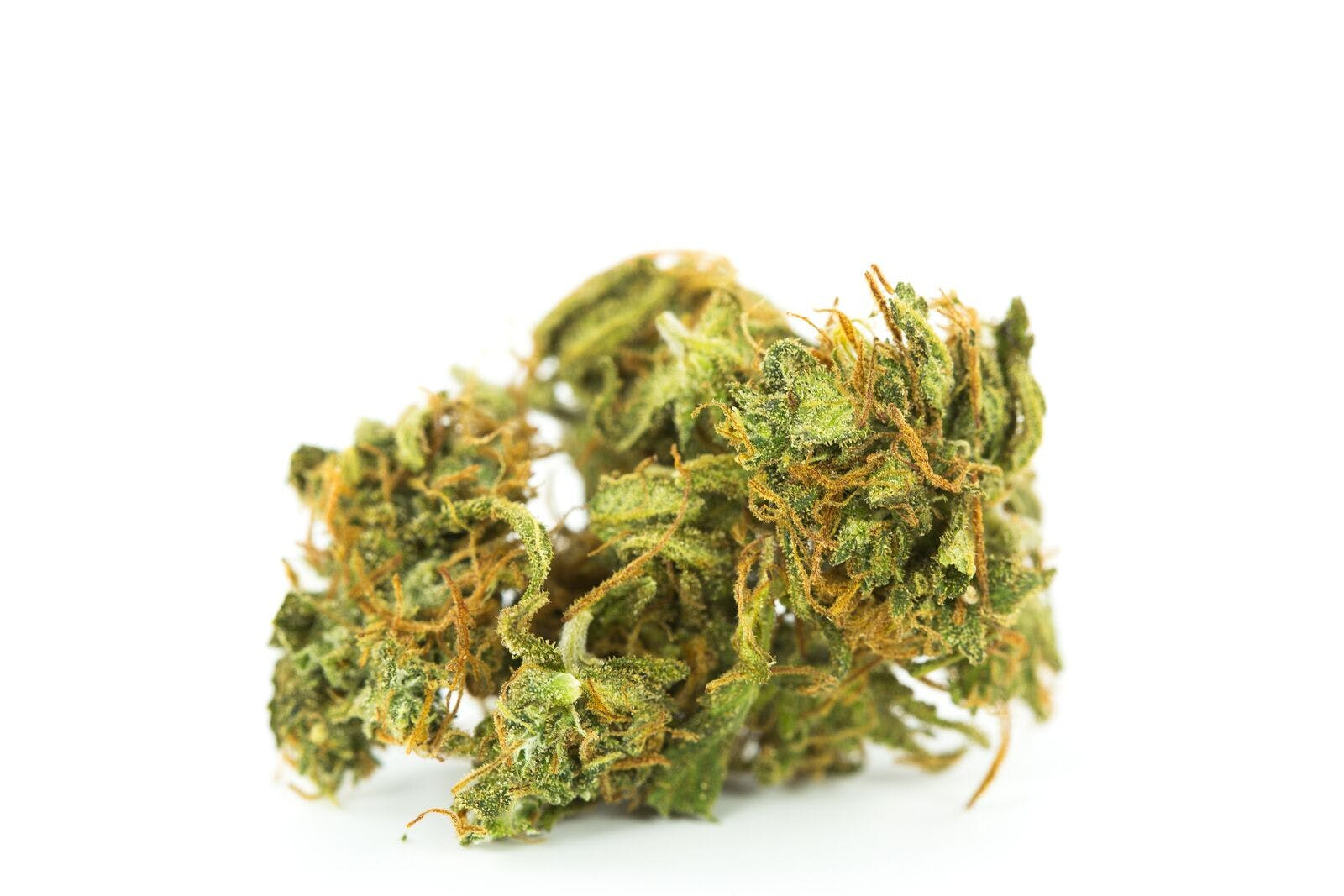 Red Congolese Weed; Red Congolese Cannabis Strain; Red Congolese Sativa Marijuana Strain