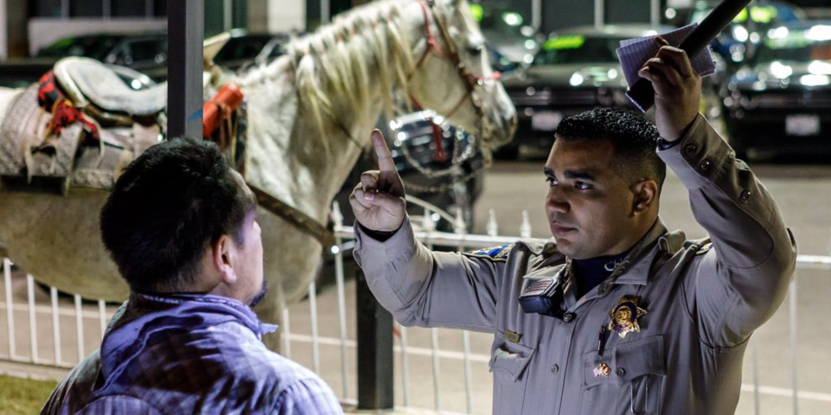 Man Gets A DUI For Drunkenly Riding His Horse On The Freeway