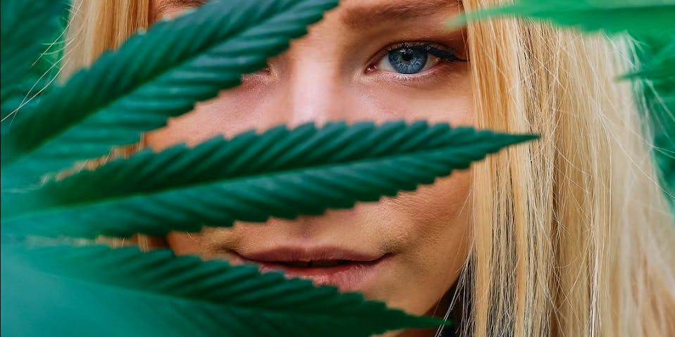 """In this article we explore """"What is Weed?"""" Here a woman is shown peering through a cannabis leaf"""