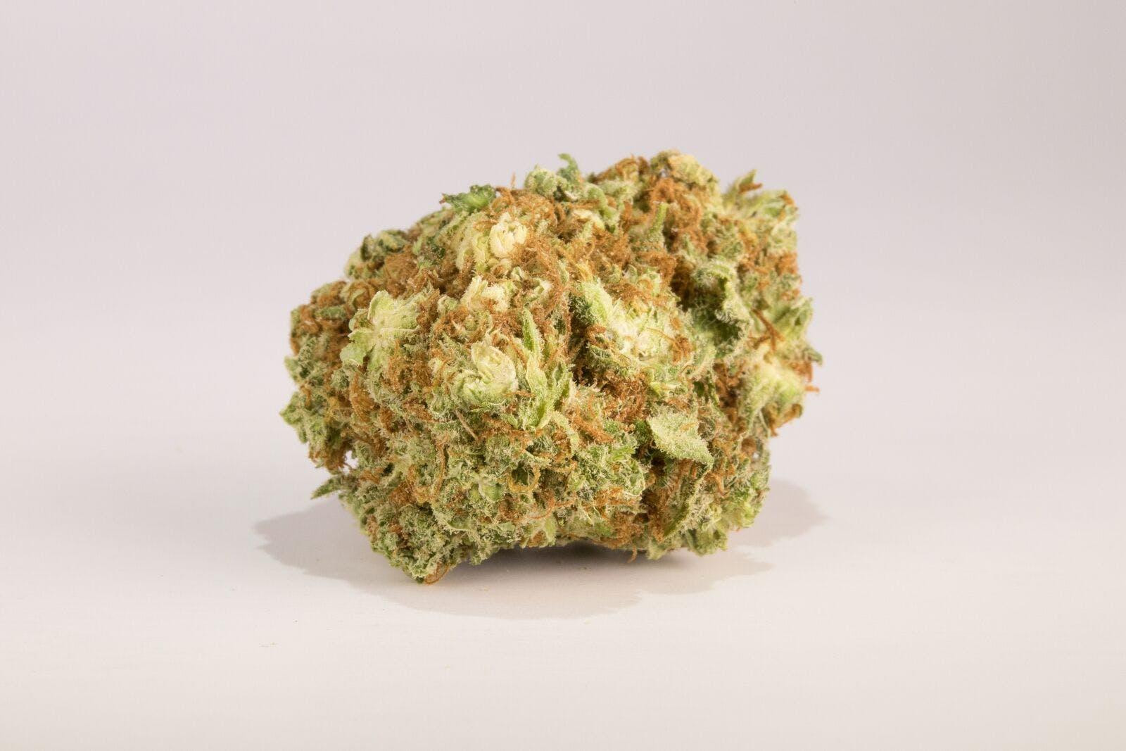 Sour Amnesia Weed, Sour Amnesia Cannabis Strain, Sour Amnesia Sativa Marijuana Strain