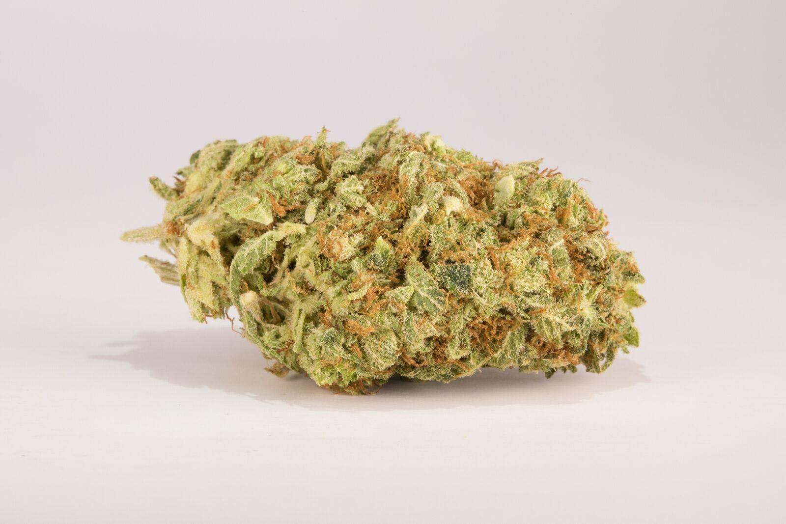 Sour Tangie Weed; Sour Tangie Cannabis Strain; Sour Tangie Sativa Marijuana Strain