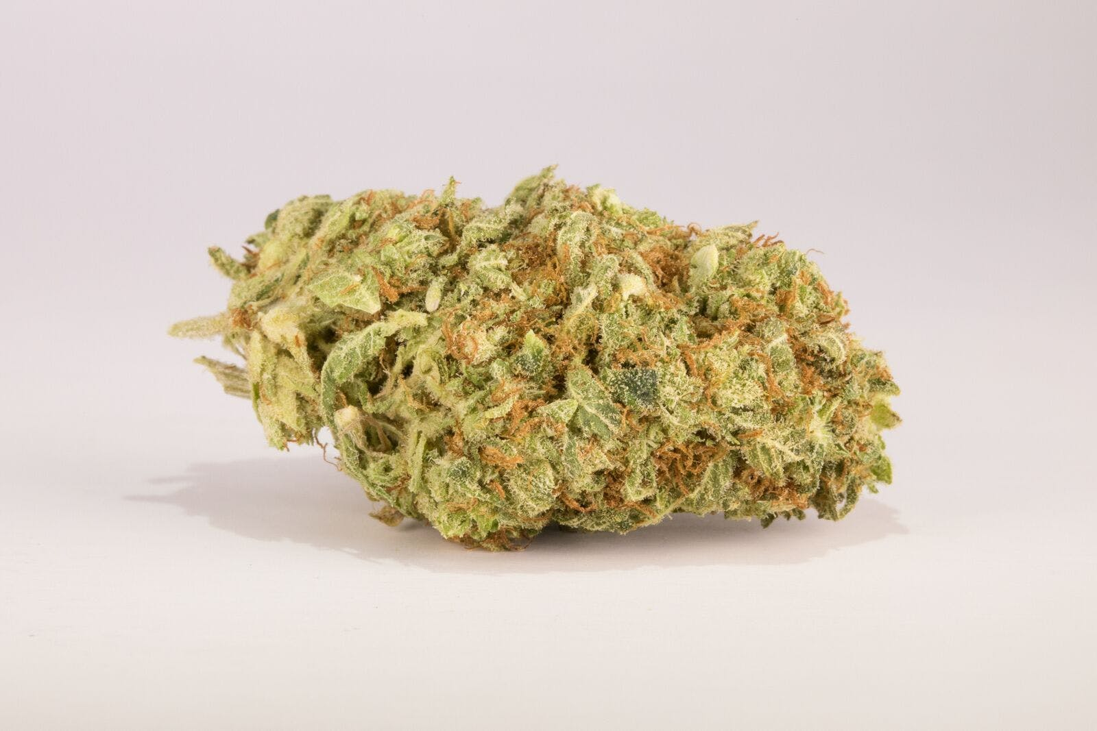 Sour Tangie Weed; Sour Tangie Cannabis Strain; Sour Tangie Sativa Marijuana Strain
