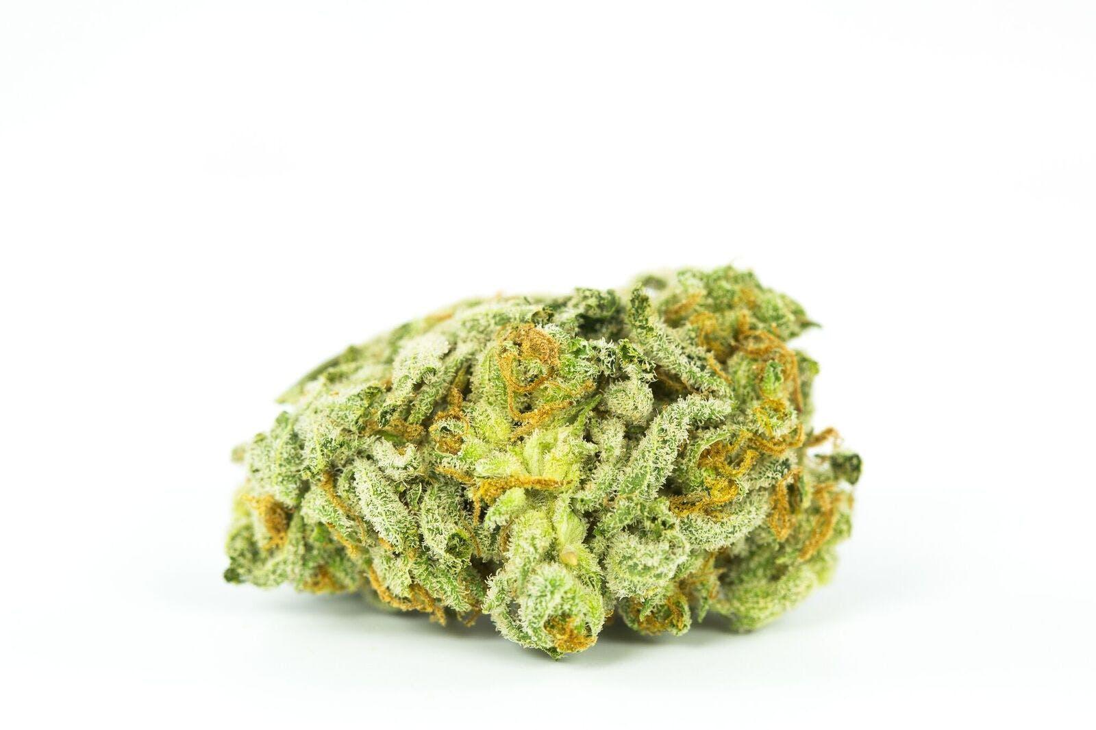 Tangerine Power Weed; Tangerine Power Cannabis Strain; Tangerine Power Hybrid Marijuana Strain