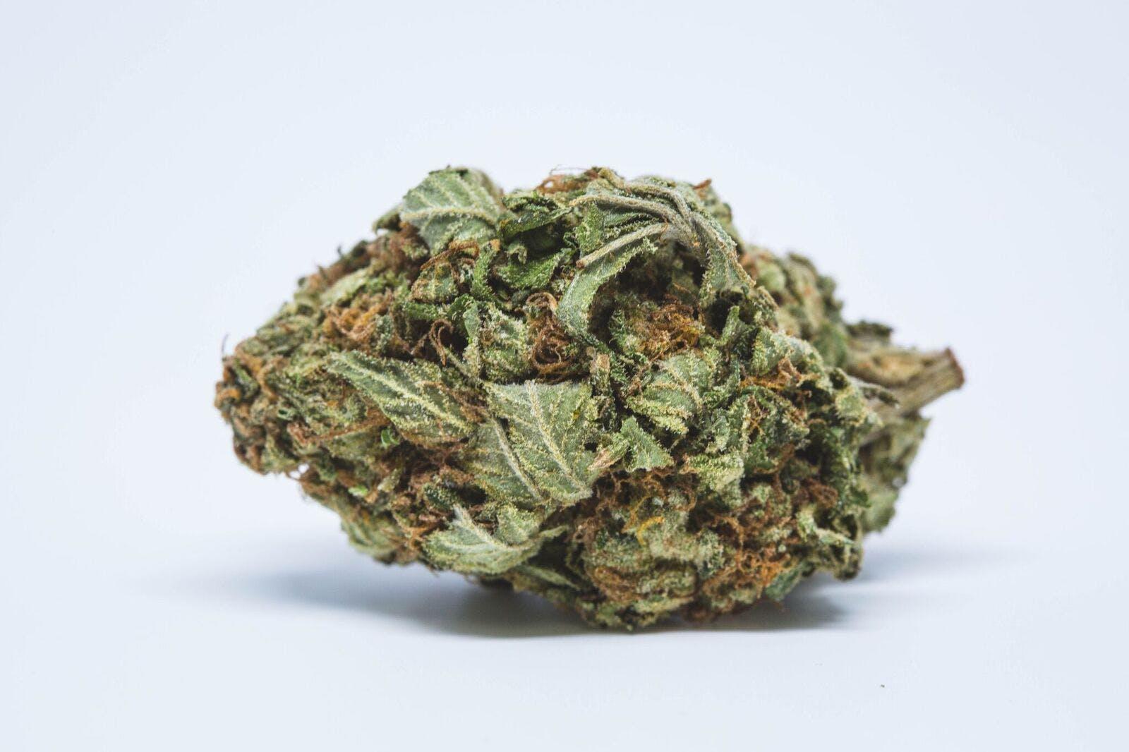 Whitewalker OG Weed; Whitewalker OG Cannabis Strain; Whitewalker OG Indica Marijuana Strain