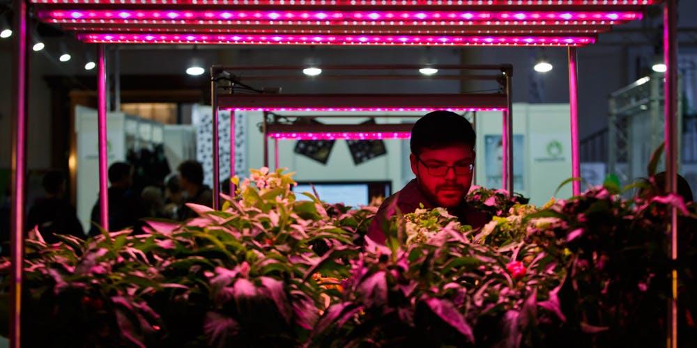 The Top 10 Cannabis Entrepreneurs of 2018