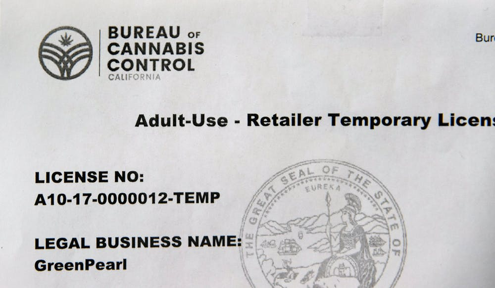 resized1 Voters, beware: We interviewed the Cannabis Candidate and hes full of it