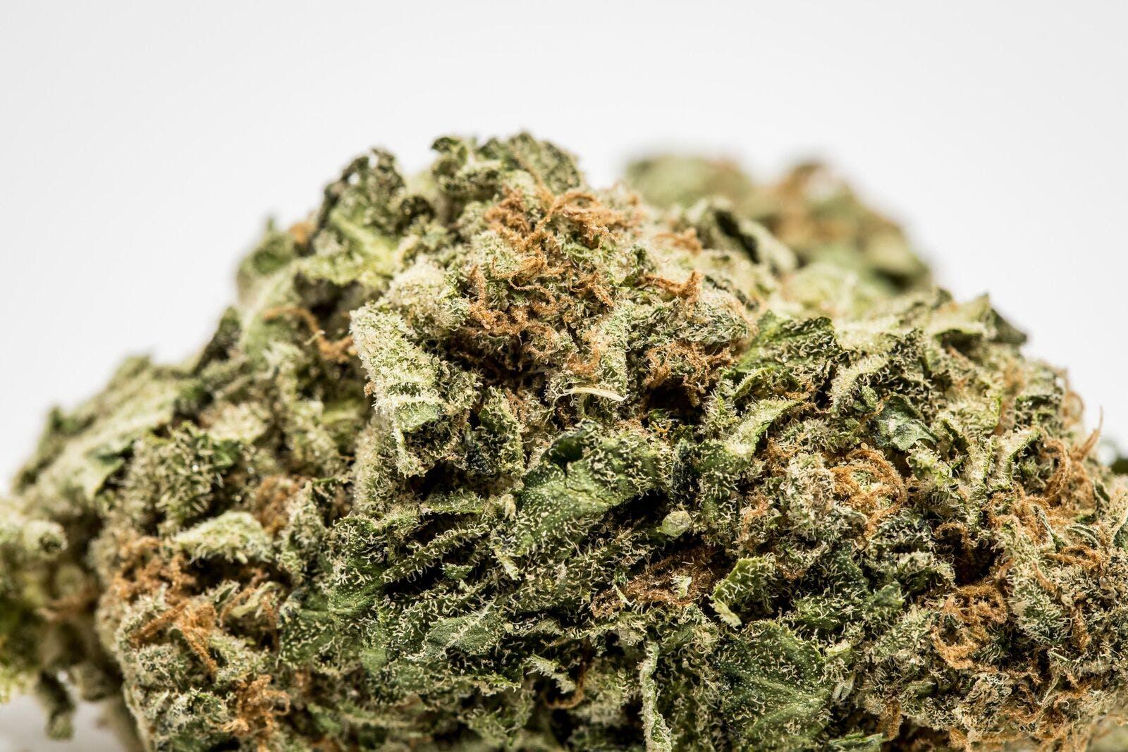 AMS Weed; AMS Cannabis Strain; AMS Indica Marijuana Strain