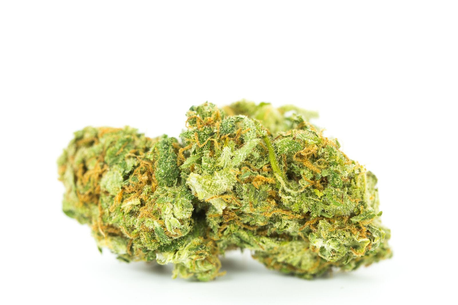 Afghani CBD Marijuana Strain Cannabis Cafes In Paris Are Trying To Claim The Bud They Sell Isnt For Smoking