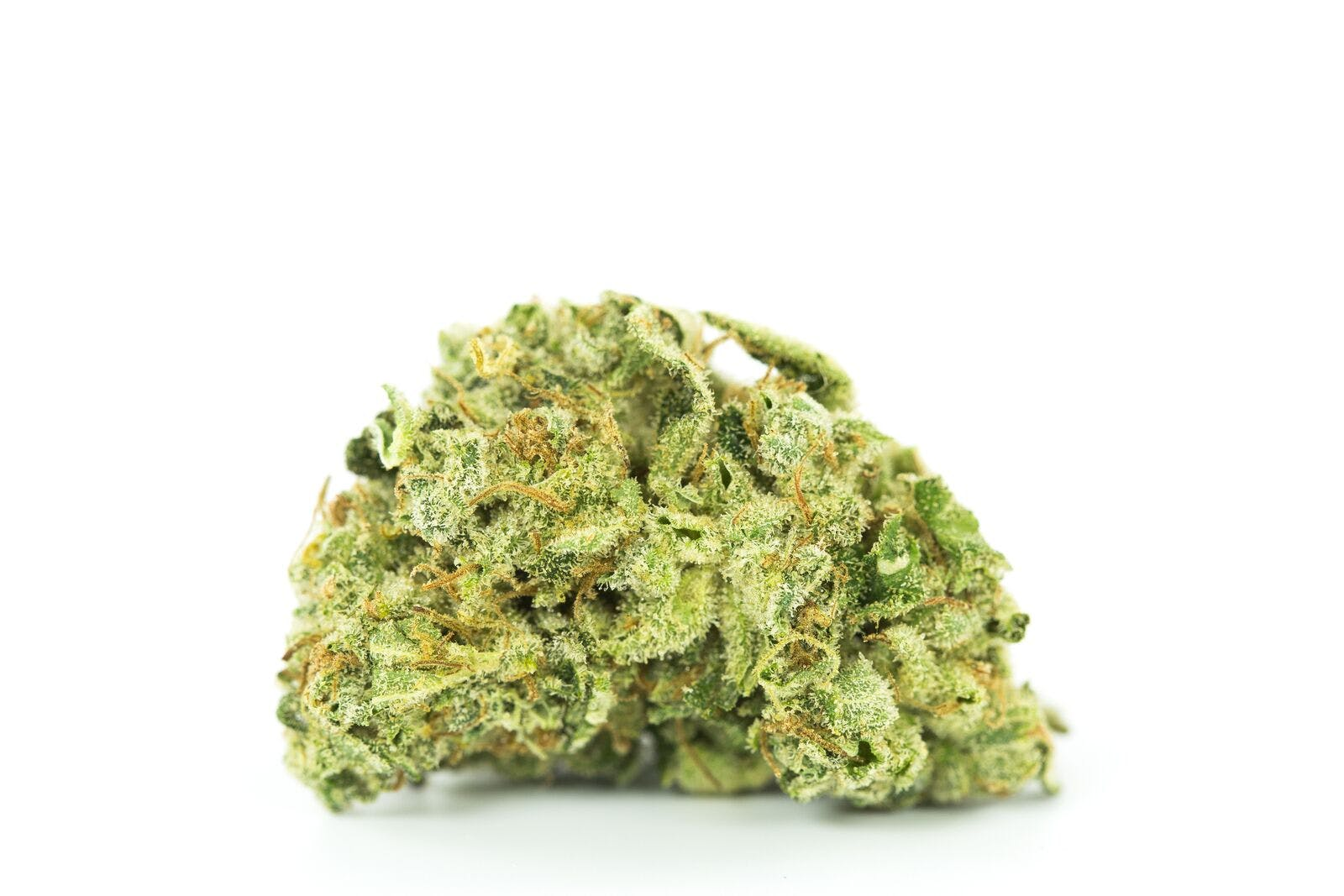 Alien Stardawg Weed; Alien Stardawg Cannabis Strain; Alien Stardawg Hybrid Cannabis Strain
