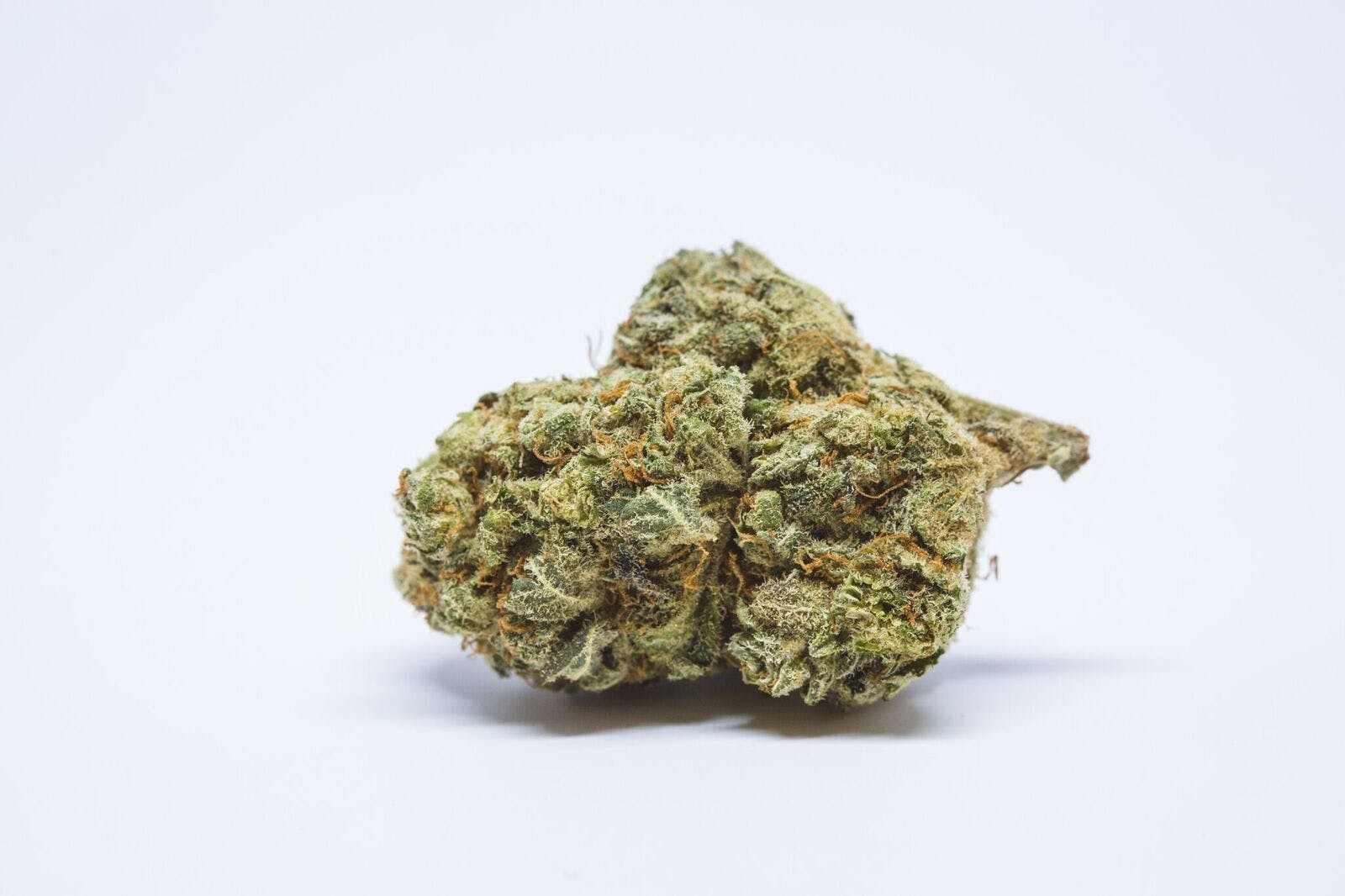 Apollo 11 Weed; Apollo 11 Cannabis Strain; Apollo 11 Hybrid Marijuana Strain