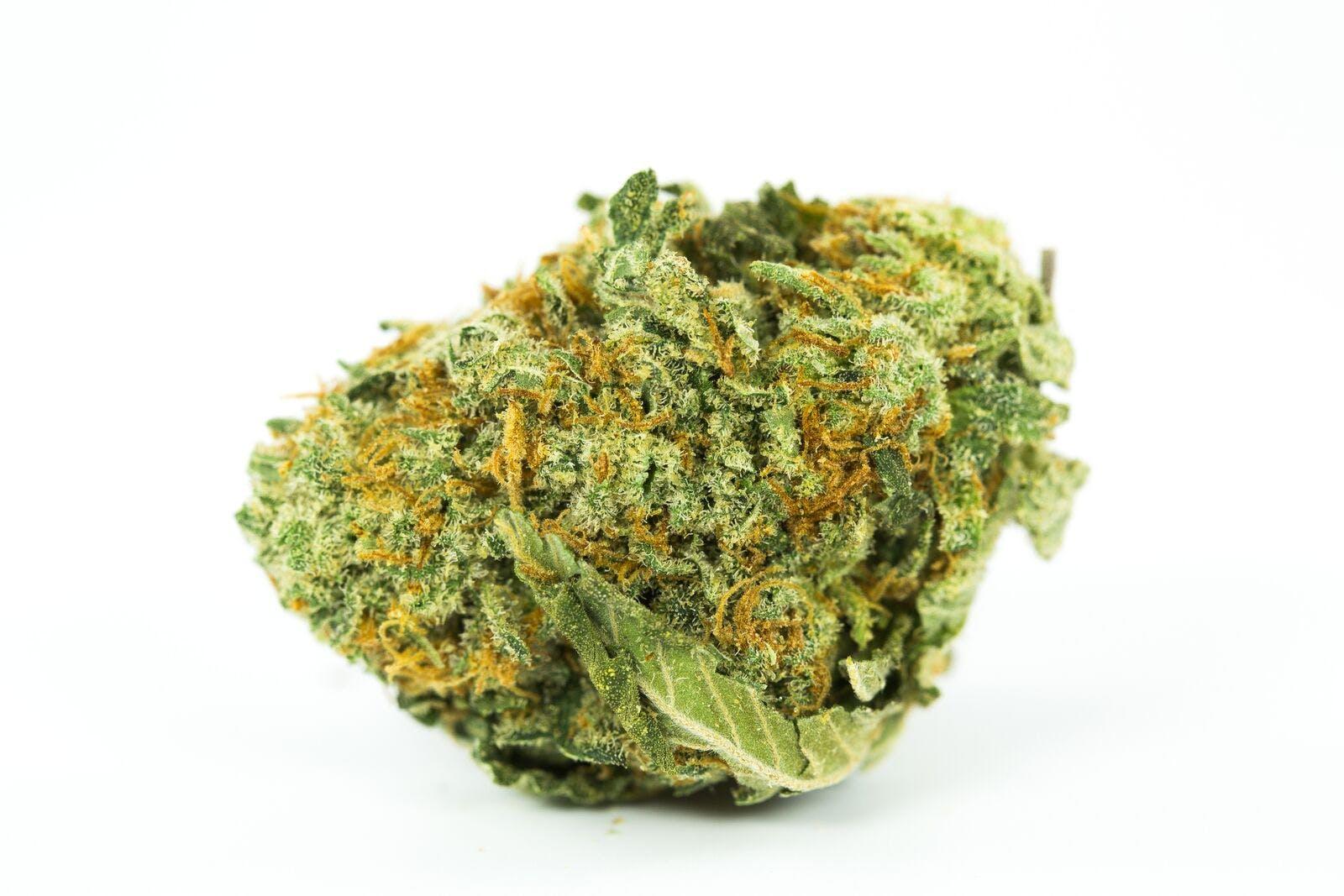 Blueberry Lemonade Weed; Blueberry Lemonade Cannabis Strain; Blueberry Lemonade Indica Marijuana Strain