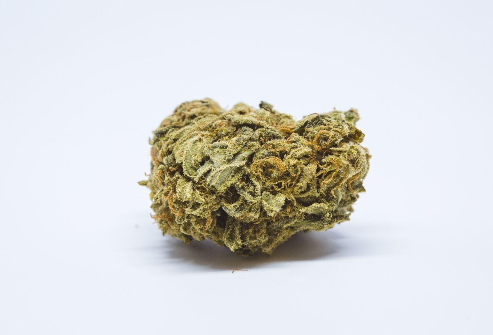 Blueberry Nuken Weed; Blueberry Nuken Cannabis Strain; Blueberry Nuken Indica Marijuana Strain