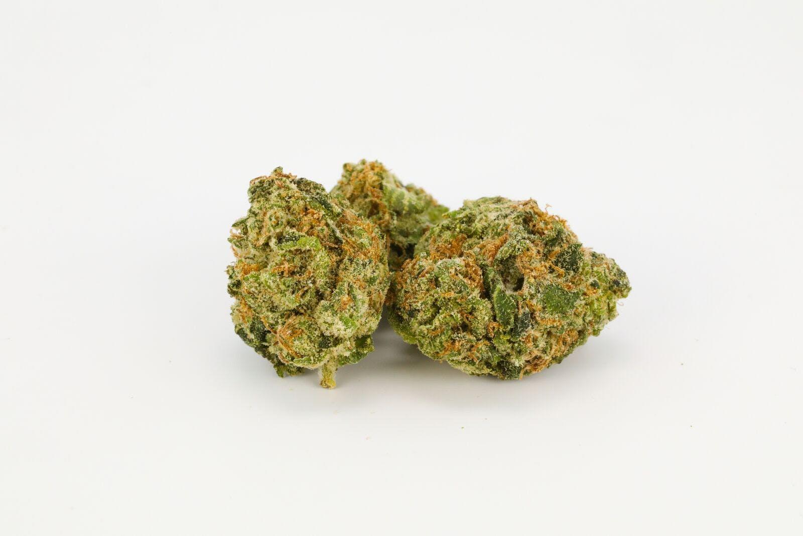 Cali Gold Weed; Cali Gold Cannabis Strain; Cali Gold Hybrid Marijuana Strain