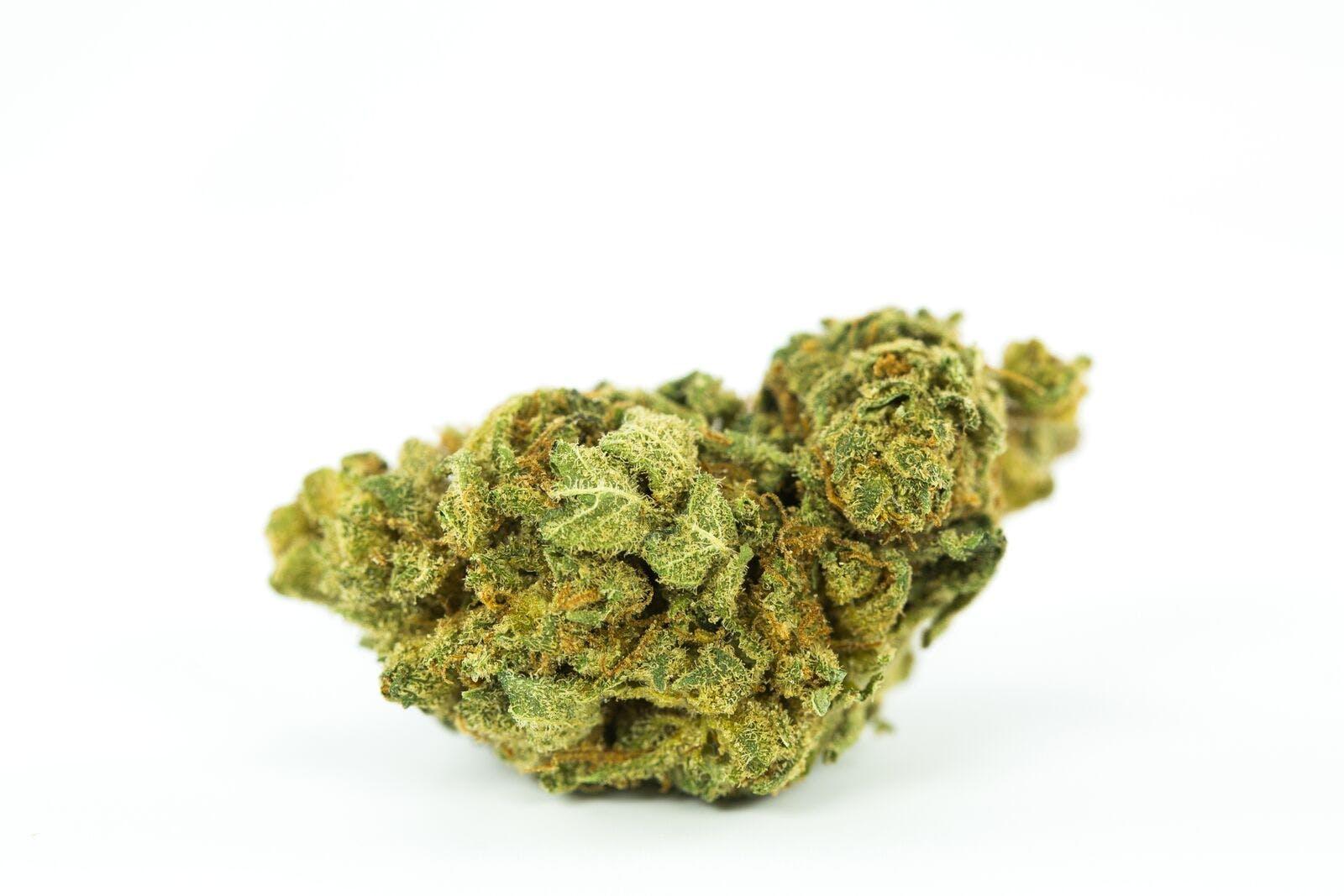 Cannalope Kush Weed; Cannalope Cannabis Strain; Cannalope Hybrid Marijuana Strain