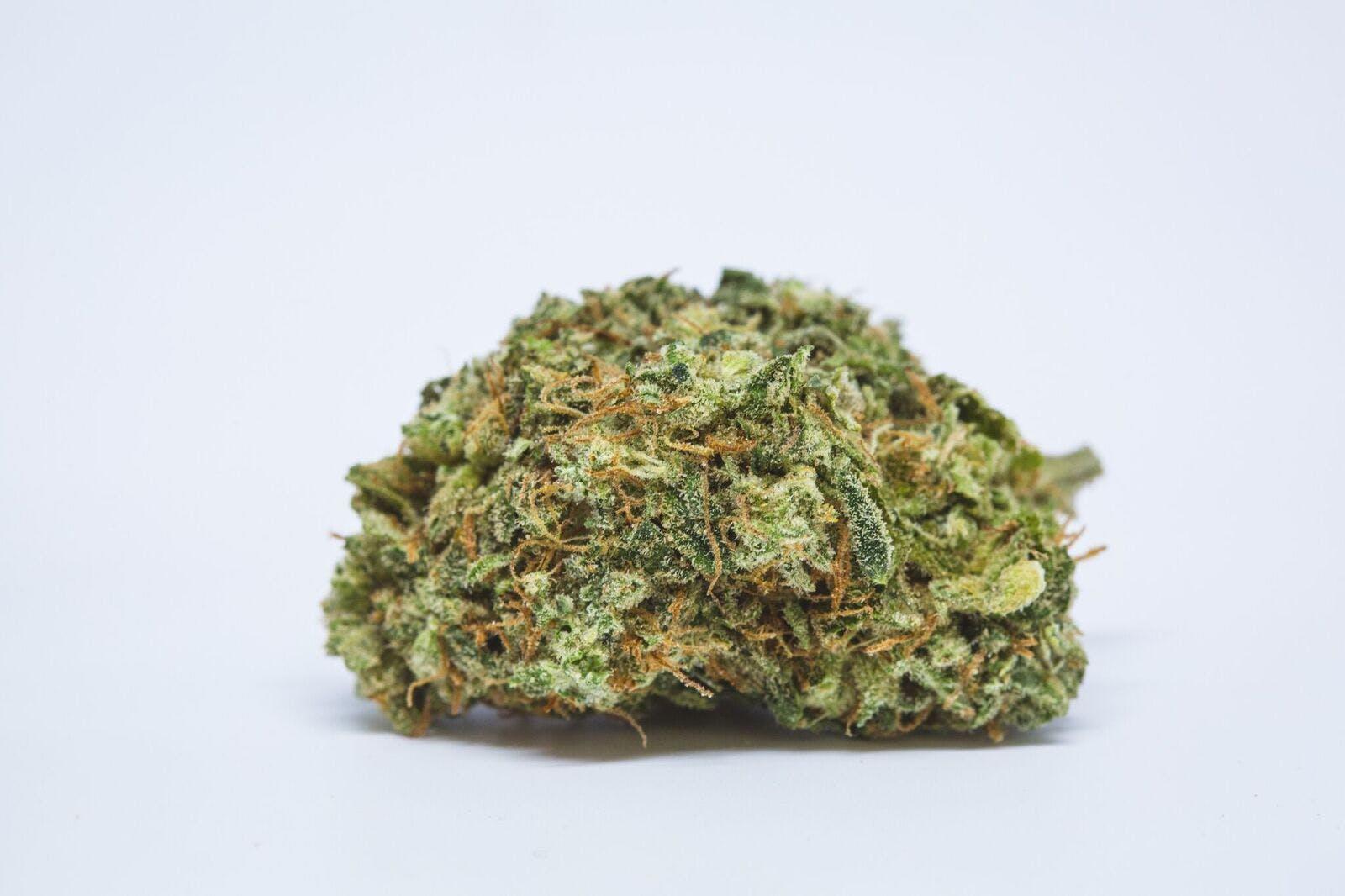Crystal Coma Weed; Crystal Coma Cannabis Strain; Crystal Coma Sativa Marijuana Strain