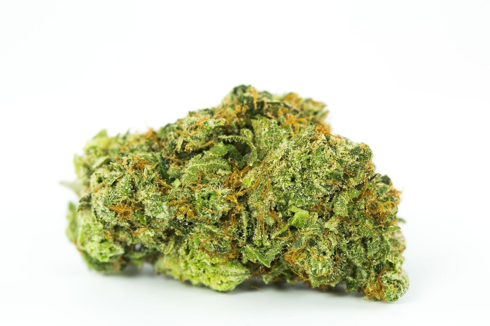 Dirty Girl Weed; Dirty Girl Cannabis Strain; Dirty Girl Sativa Marijuana Strain
