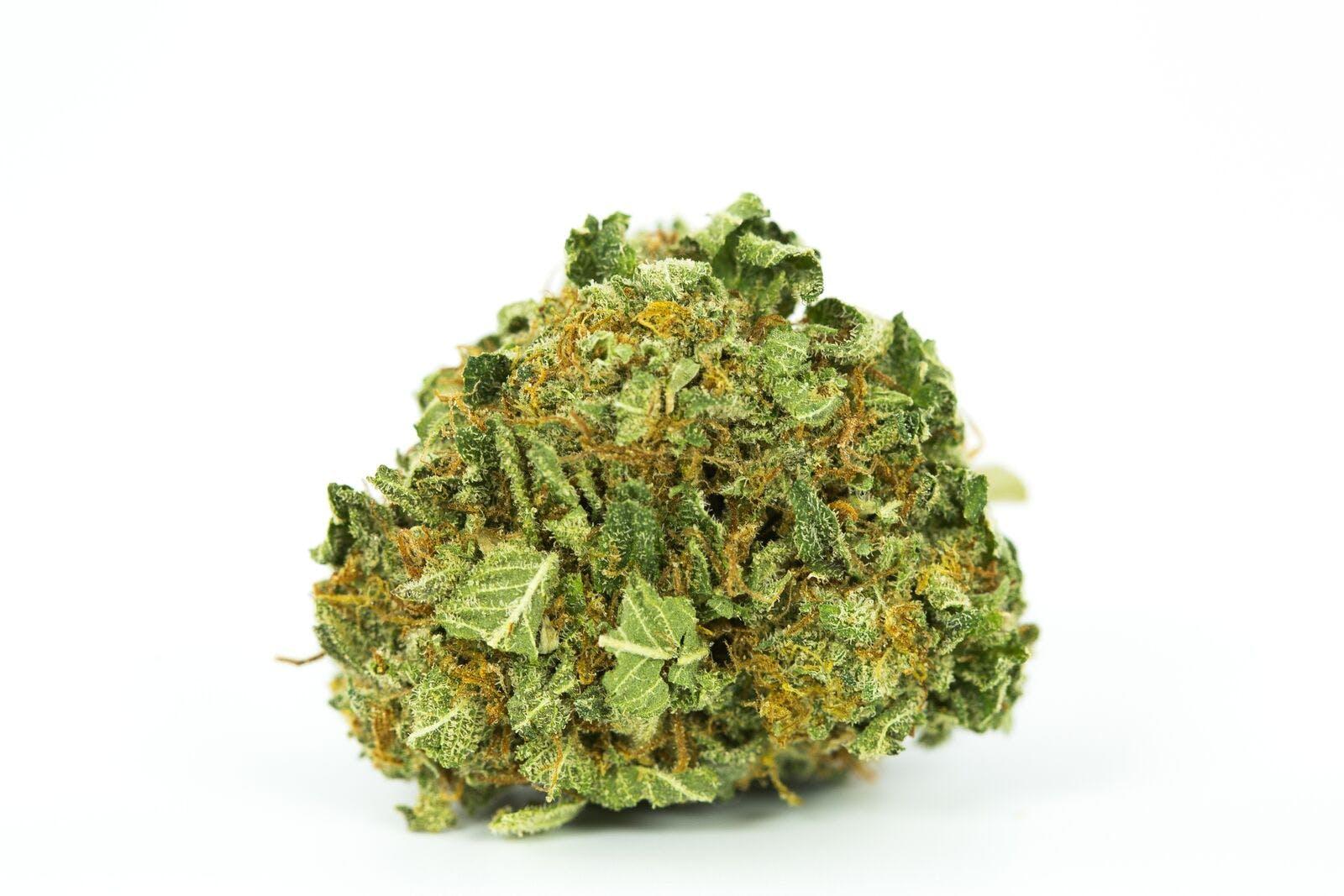 Face Off OG Weed; Face Off OG Cannabis Strain; Face Off OG Indica Marijuana Strain