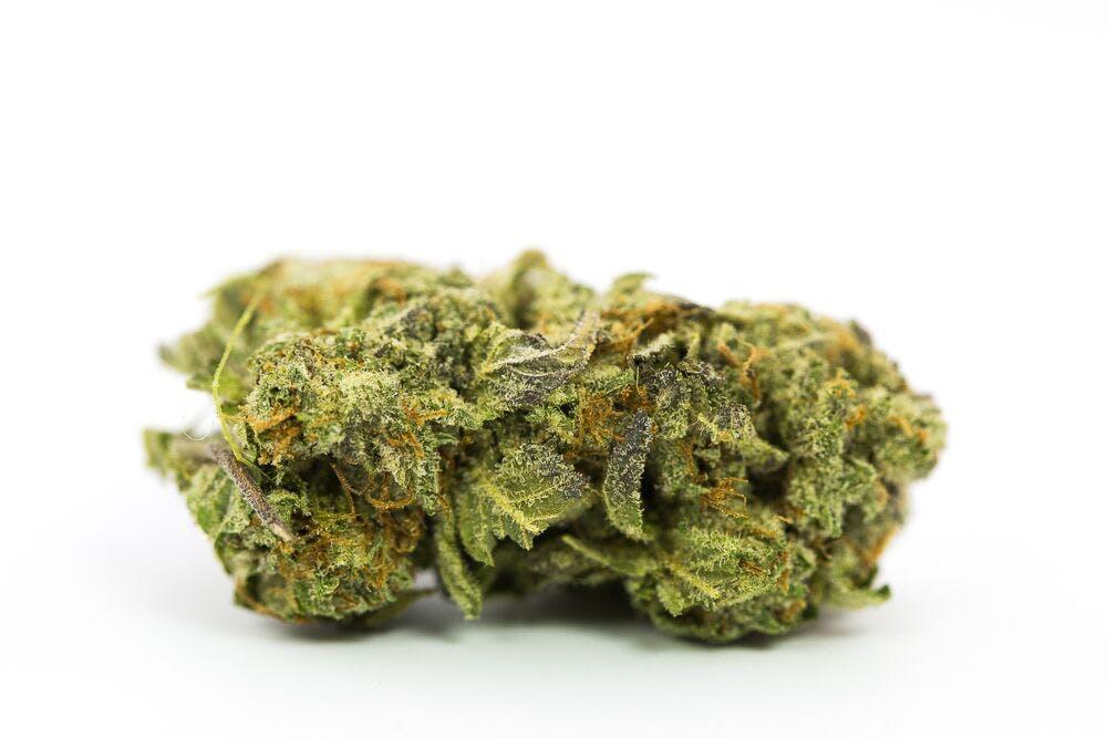 Grand Master Kush weed; Grand Master Kush Cannabis Strain; Grand Master Kush Indica Marijuana Strain
