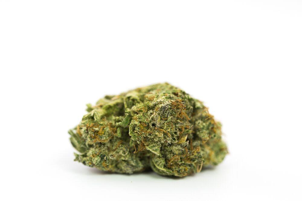 Hippe Crippler Weed; Hippie Crippler Cannabis Strain; Hippie Crippler Hybrid Marijuana Strain